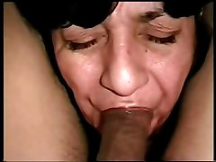 Swallow videos